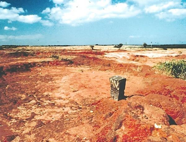 'Acres for Auroville Flier' – November 24, 2017