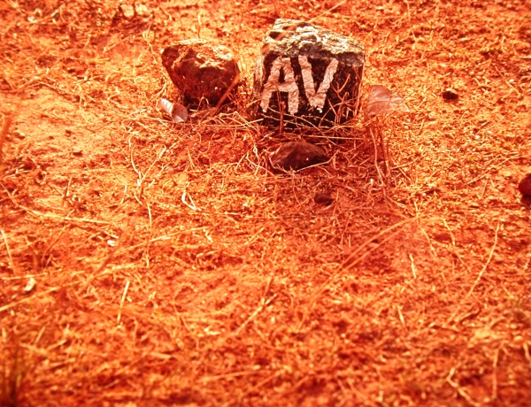 Complete list of online films about Auroville's land!
